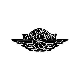 Air Jordan 1 Logo Primary